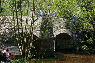 Fingle Bridge, Devon