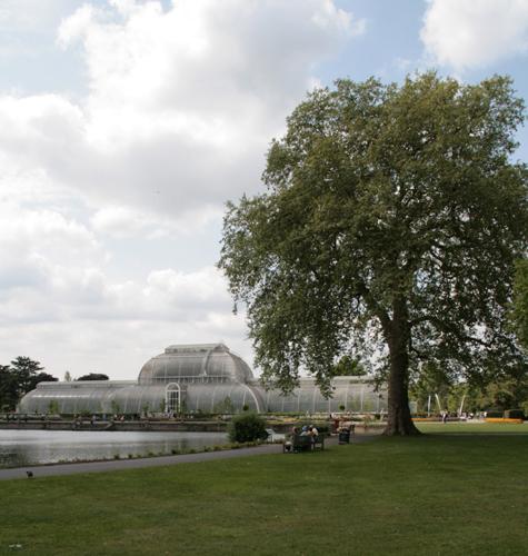 Palm Glasshouse, Kew Gardens